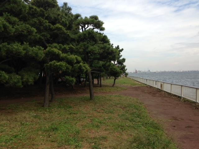 暁ふ頭公園1