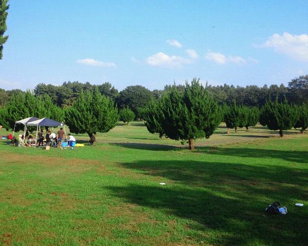 秋ヶ瀬公園1