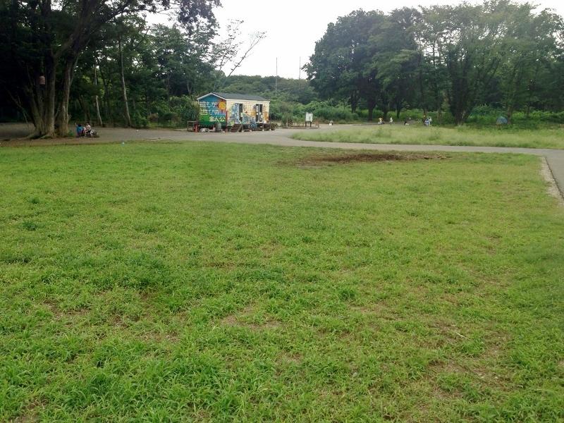 朝霞の森公園2