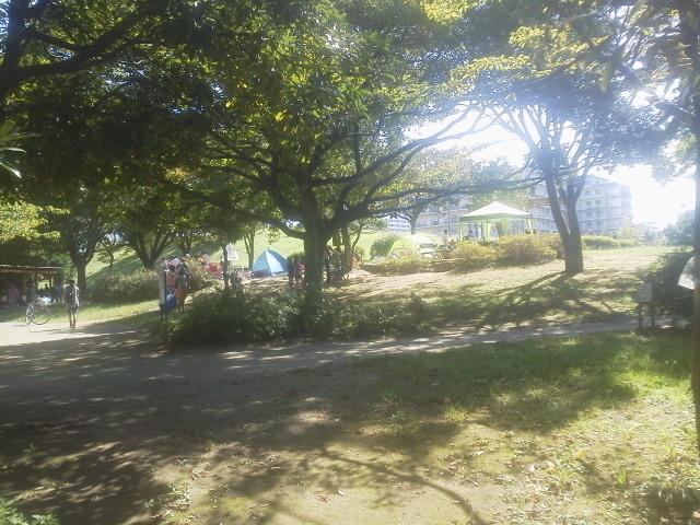 富士公園2