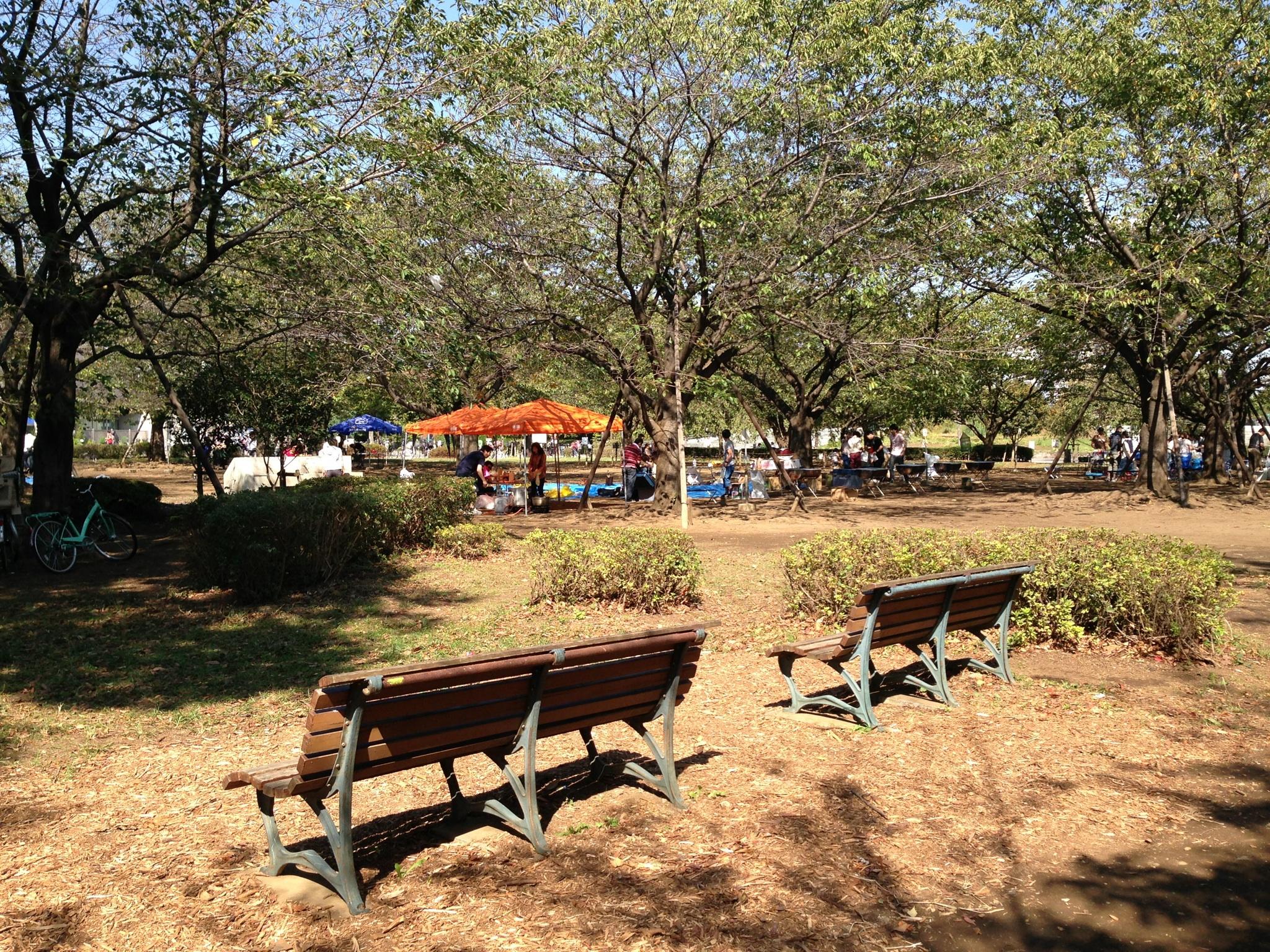 木場公園1