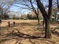 栗山公園2