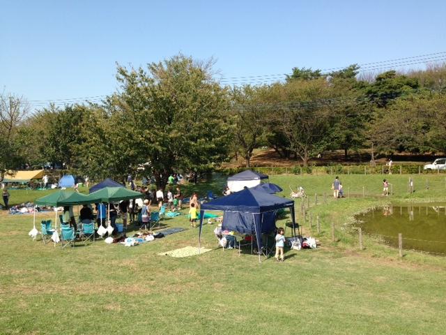 大泉さくら運動公園1