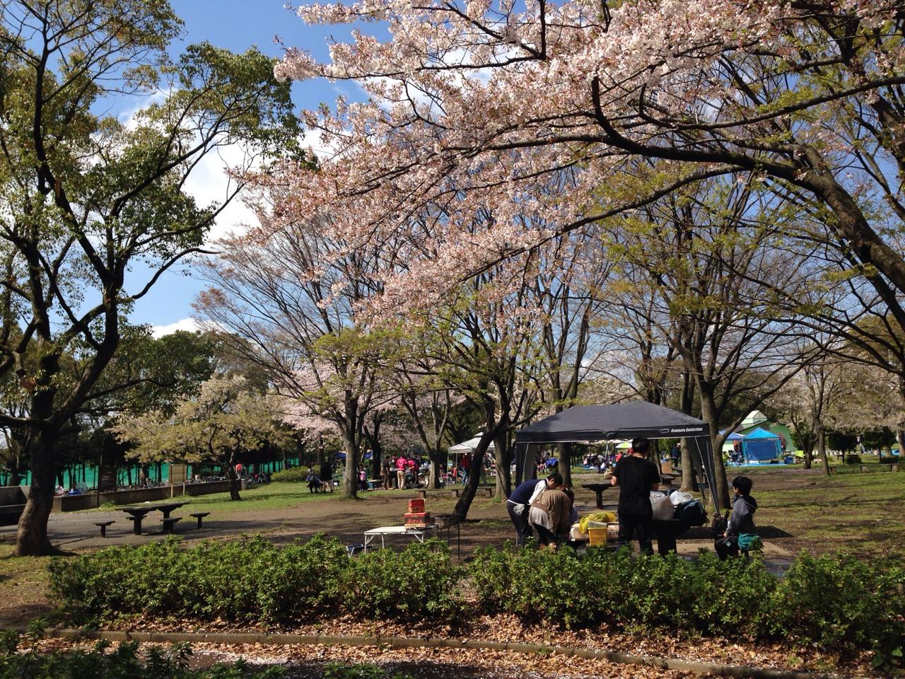 篠崎公園1