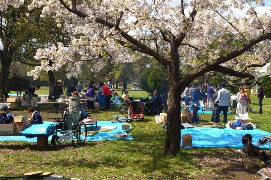 篠崎公園2