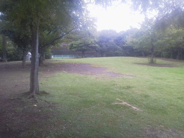辰巳の森公園2